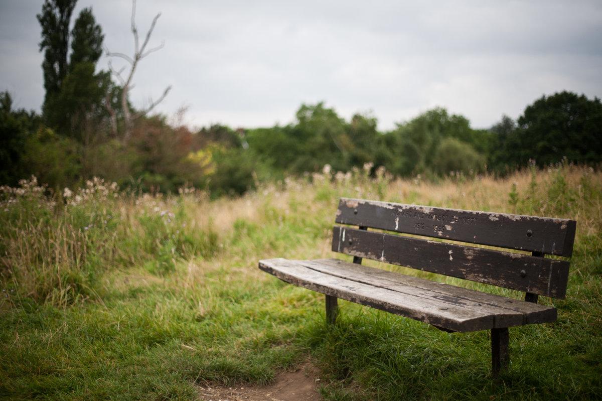 Richard & Margot Bennett's bench on the top of Parliament Hill