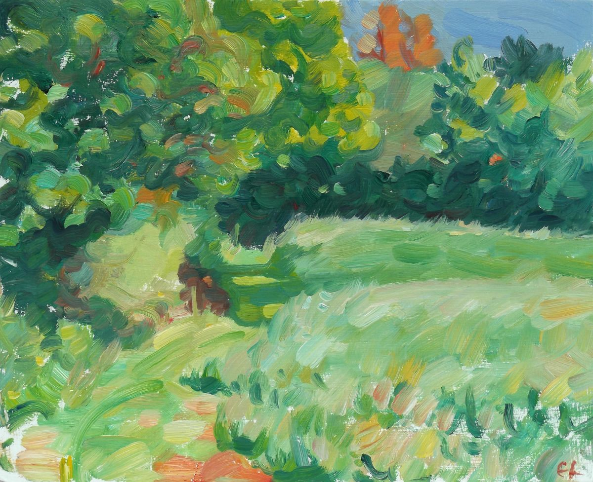 Field edge, early summer