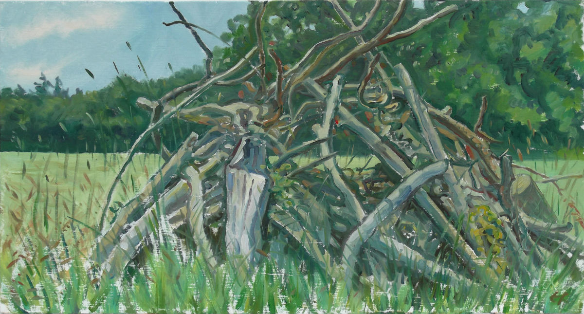 woodpile, summer